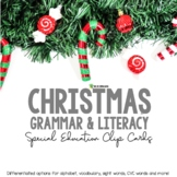 Christmas Literacy and Grammar Clipping Cards for ESL First and Second Grade