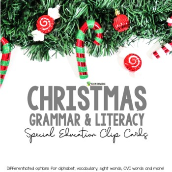 Christmas Literacy and Grammar Clipping Cards for ESL Firs