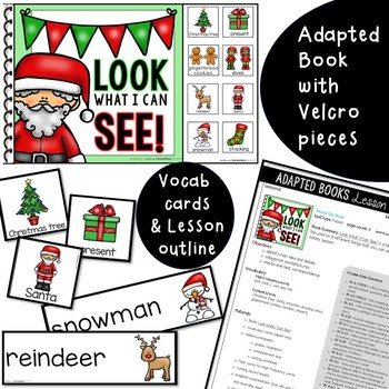 """Christmas """"Look What I Can See"""" Adapted Book"""