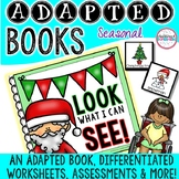 "Christmas ""Look What I Can See"" Adapted Book"