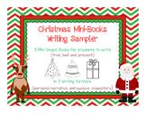 Christmas Holiday Mini Shape Books Writing Narratives Expo