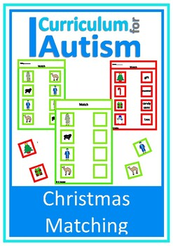 Christmas Nativity & Decorations Matching, Autism Special
