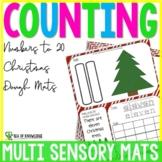 Number Sense Dough Mats to 20 - Christmas