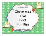Christmas Owl Fact Families