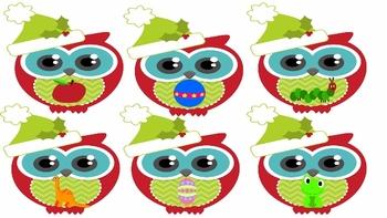 Christmas Owl Phonics: Common Core Aligned