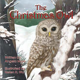 Christmas Owl Picture Book