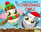 Christmas Owls Watercolor Clipart   Instant Download Vector Art