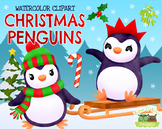 Christmas Penguins Watercolor Clipart   Instant Download V