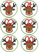 Christmas Picture Book Advent Tags