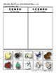 Christmas Pre-K/Kindergarten Pack (English with Traditiona