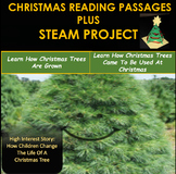 Christmas Reading Comprehension Passages and STEAM Project