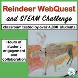 Christmas:  Reindeer WebQuest and STEM / STEAM Challange