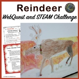 Distance Learning:  Christmas:  Reindeer WebQuest and STEM / STEAM Challenge