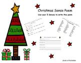Christmas Sense Poem