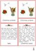 Christmas Symbols Montessori 3-part cards + description cards