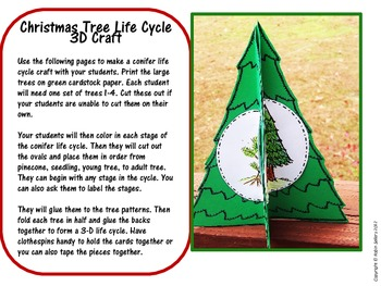 Christmas tree craft 3 d life cycle of a conifer craftivity by robin sellers - Christmas cycle 3 ...