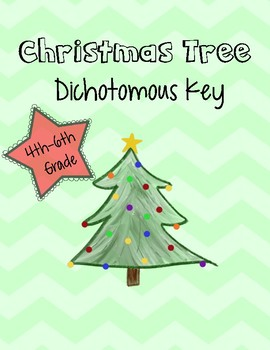 Christmas Tree Dichotomous Key