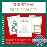 Balsam Fir Ecology (CHRISTMAS TREE) FREEBIE