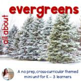 Christmas Tree / Evergreens / Conifer NO PREP Mini Unit