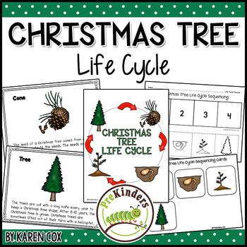 Christmas Tree Life Cycle | Winter Science | Preschool Pre-K