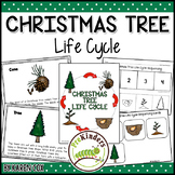 Christmas Tree Life Cycle | Winter Science | Preschool Pre-K