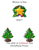 Christmas Tree Spatial Concepts