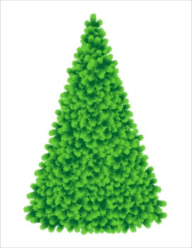 Christmas Tree, Tall and Fluffy, Commercial Use Allowed