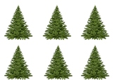 Christmas Trees Without Decorations Freebie