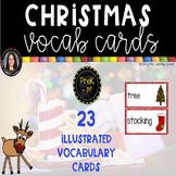 Christmas Vocabulary Word Cards ~ Polka Dots