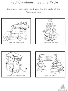 Christmas Writing Activity: Life Cycle, How To Writing Activity, & Drawing