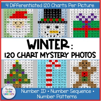 Winter Math Mystery Pictures on 120 Chart