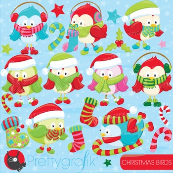 Christmas birds clipart commercial use, vector graphics, digital - CL749