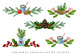 Christmas clipart set, christmas bouquet, pine cones, branches, nuts, cinamon