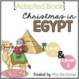 Christmas in Egypt Adapted Book { Level 1 and Level 2 }
