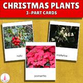 Christmas plants Montessori 3-part cards