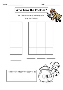 Chromatography Experiment Science Mixtures worksheet