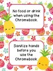 Chromebook Rules - Pineapple Themed