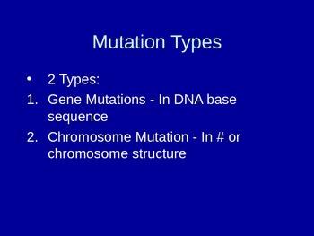 Chromosomal Mutations PowerPoint