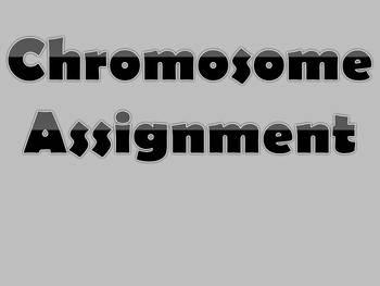 Chromosome Assignment