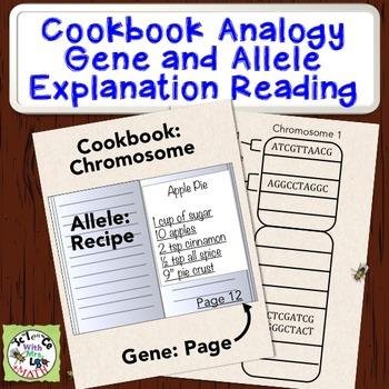 Chromosome Gene Allele Cookbook Analogy Short Reading and