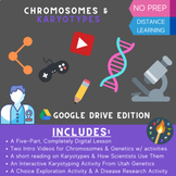 Chromosomes & Karyotypes - A Digital Learning & Exploratio
