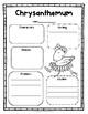 Chrysanthemum: A Common Core Book Study