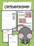 Chrysanthemum. By Kevin Henkes. Worksheets and Activity Ideas