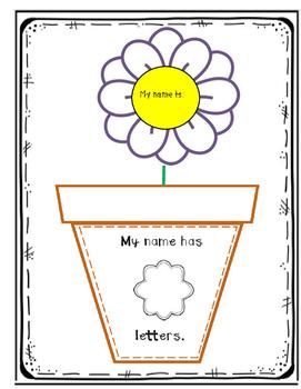 Chrysanthemum Flower Experiment