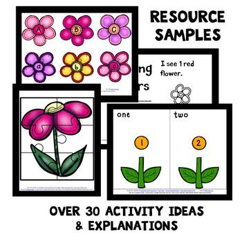 Chrysanthemum Home Preschool Lesson Plans