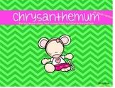 Chrysanthemum Literacy Unit (Book 4)