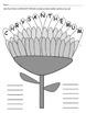 Chrysanthemum Themed First Week of School Activities