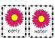 Chrysanthemum Vocabulary and Spelling