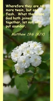 Church Set - Matthew 19:6