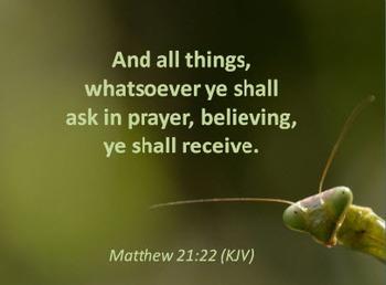 Church Set - Matthew 21:22